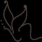 Logo La Boutique de la belleza